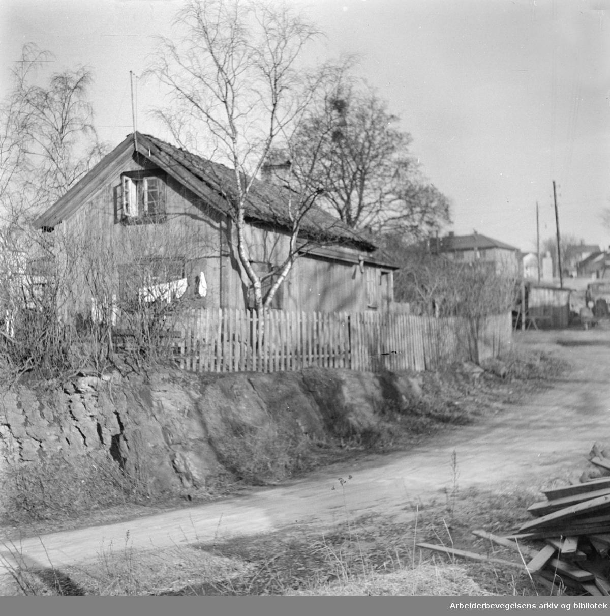 Nydalen: Gamle hus. Februar 1949
