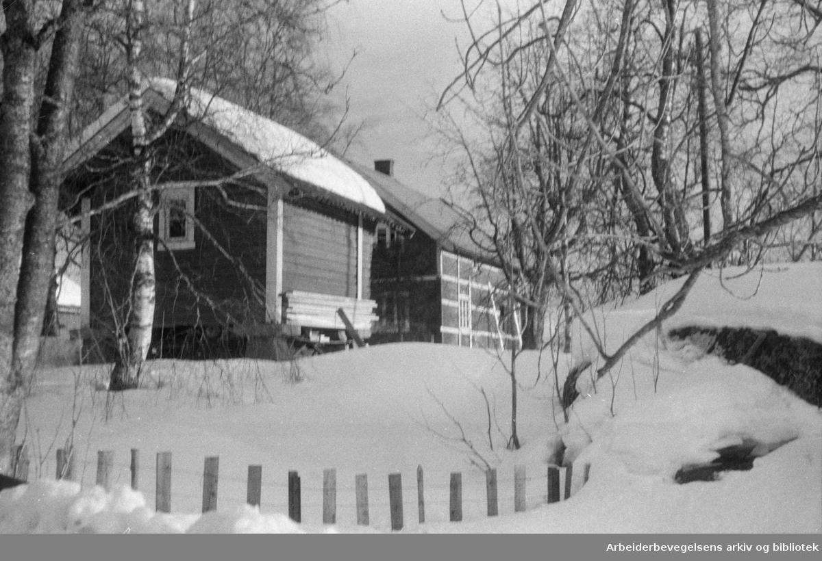 Nordmarka: Bjørnholt. Mars 1953