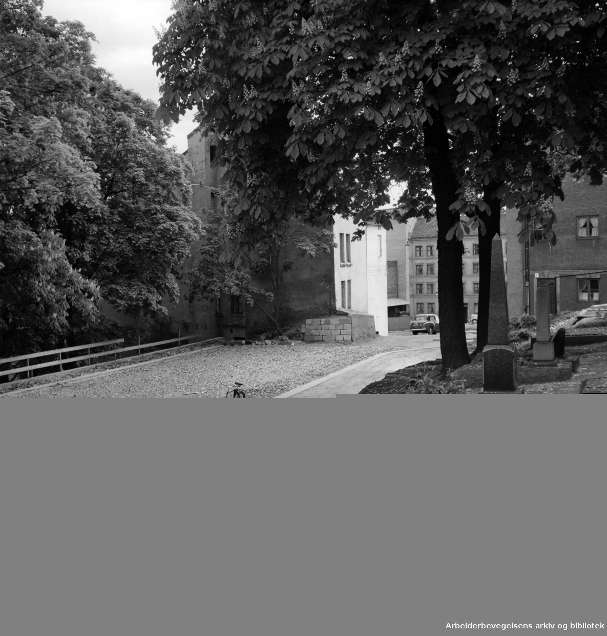 Just Høeghs gate. Juni 1951