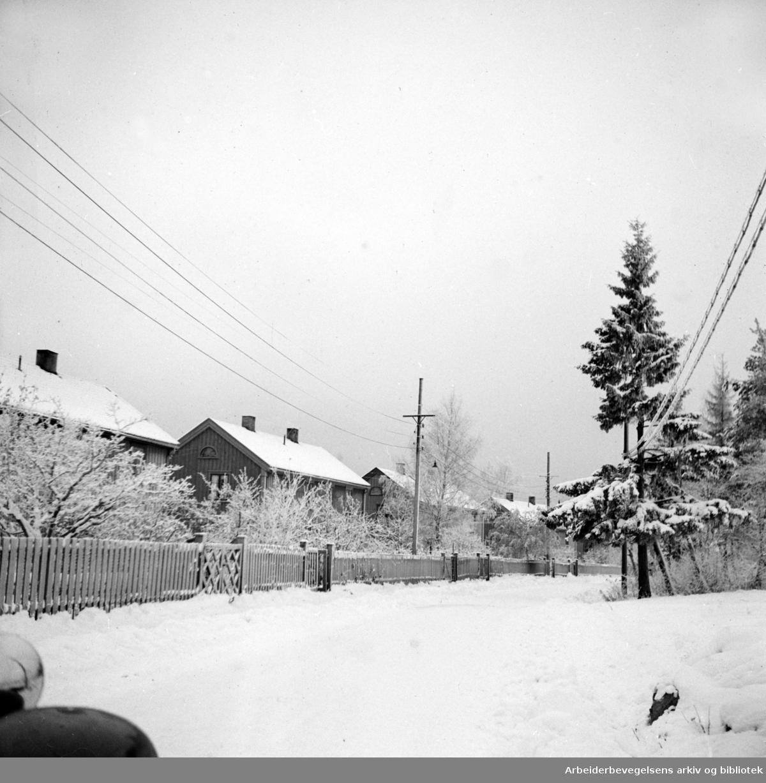Holtet Hageby. Erlandstuveien. November 1947