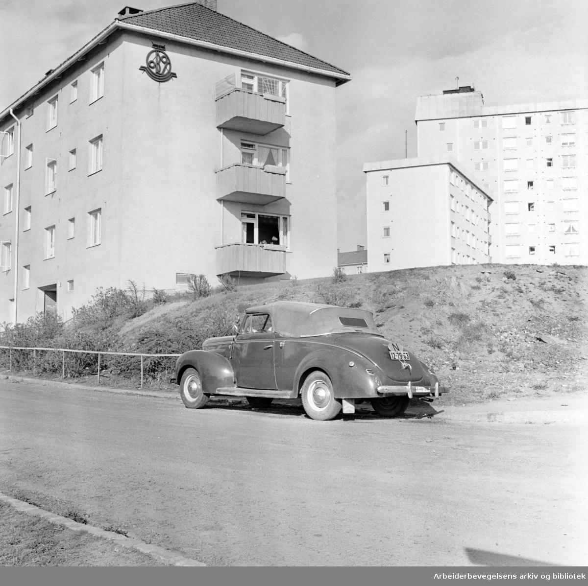 Grenseveien. Mai 1961