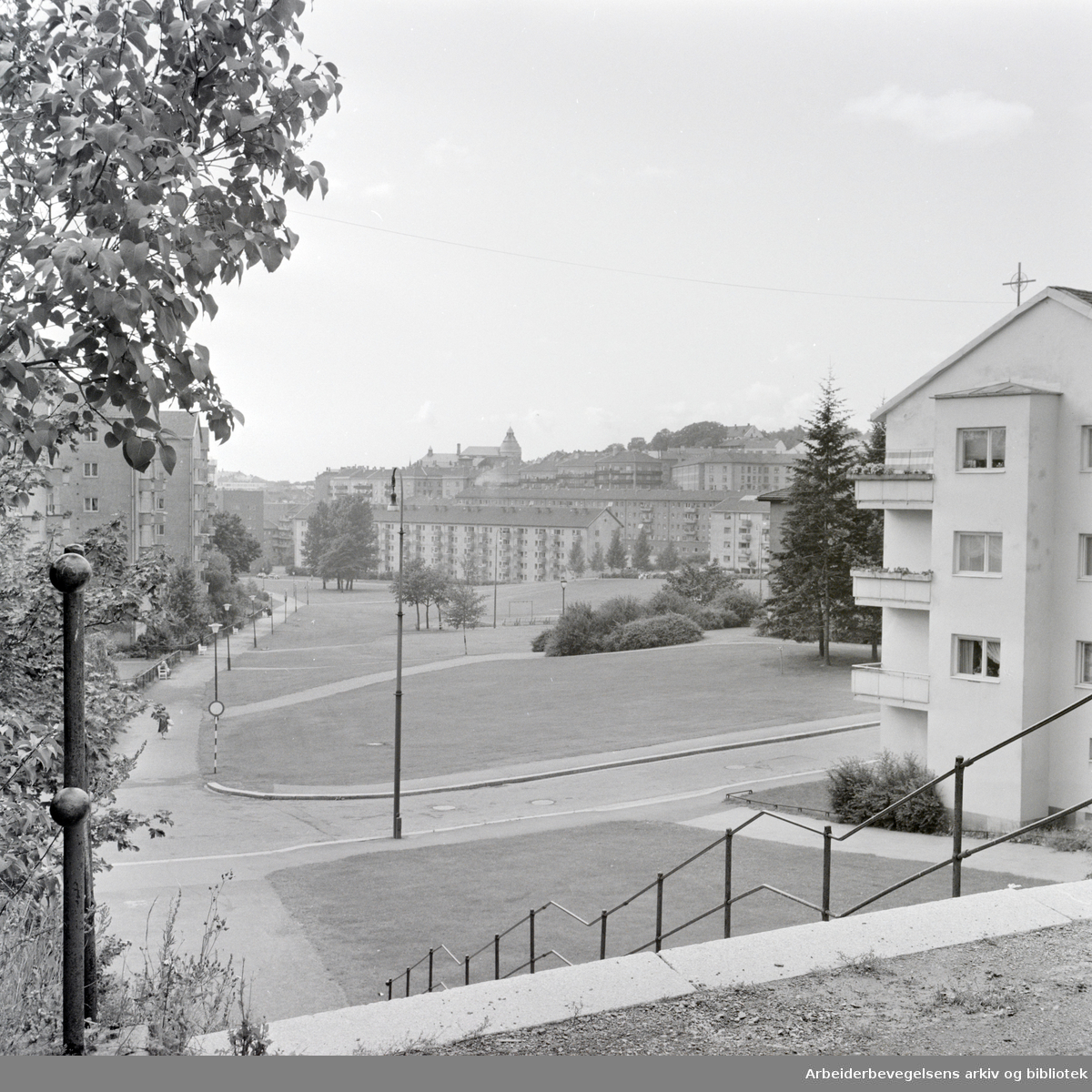 Griffenfeldts gate. August 1964