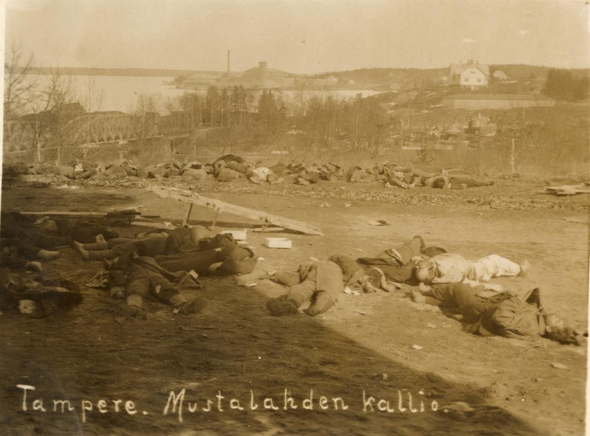 "Text i fotoalbum: ""Tampere. Mustalahden kallio - avrättningsplatsen""."