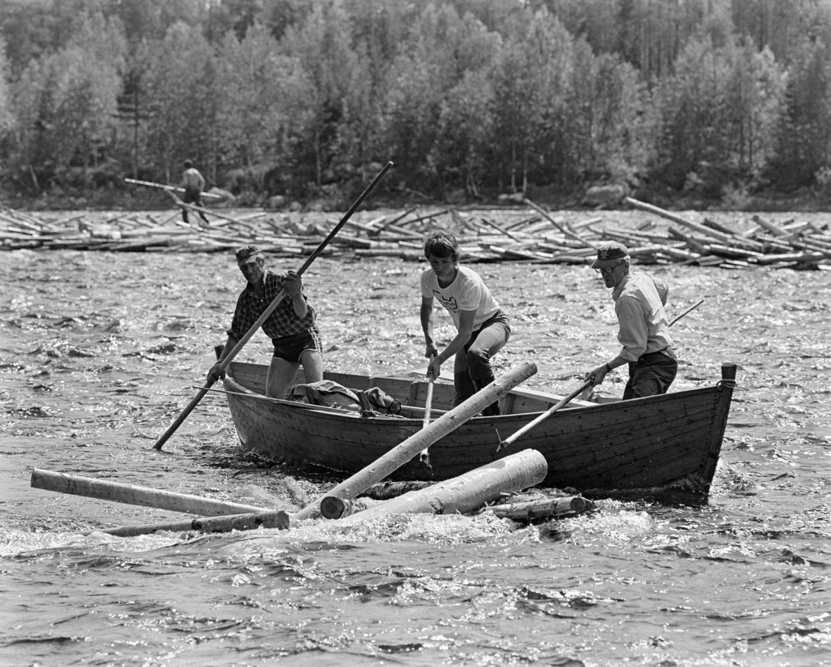 Fra tømmerfløtinga på Trysilelva i Hedmark sommeren 1978.  I forgrunnen ser vi en fløterbåt som Einar Liberg (til venstre) og Ole K. Rømoen holdt rolig i elvestrømmen ved å presse overendene av hakeskaftene sine ned mot botnen, mens den yngre arbeidskameraten Bjørn Graff forsøkte å løsne stokker som hadde satt seg fast like ved båten ved hjelp av en langskaftet fløterhake.  Bak båten skimter vi en lang, smal tømmervase der strømmen i elva hadde presset stokkene sammen, slik at de sprikte i mange retninger.  Her skimter vi en ung fløter med hake (muligens Jan Jensen, som seinere har tatt navnet Jan Nordvålen) på veg nedover for å løsne tømmeret.  Langs elvebredden vokste det lauvskog, bakenfor raget eldre gran- og furutrær betydelig høyere.  I 1978 skal det ha vært innmeldt 70 699 kubikkmeter tømmer til fløting i Trysilelva.  Tømmeret gikk til svenske kjøpere, som til sammen skal ha mottatt 112 463 kubikkmeter virke fra Trysilvassdragets nedslagsfelt.  Differensen mellom de to tallene må antakelig ha vært virke som ble transportert over riksgrensa på lastebiler.   I 1978 sysselsatte Klarälvens flottningsförening 27-28 sesongarbeidere med fløting på norsk side av grensa.  Mange av disse var veteraner, men fløtingsledelsen var opptatt av å rekruttere yngre aktører også, med sikte på at fløtinga i Trysil skulle fortsette sjøl om den ble nedlagt i mange andre vassdrag.  Langs Trysilvassdraget var det stor interesse for slikt arbeid. Fløting av tømmer. Skogbruk. Tømmerfløtere.