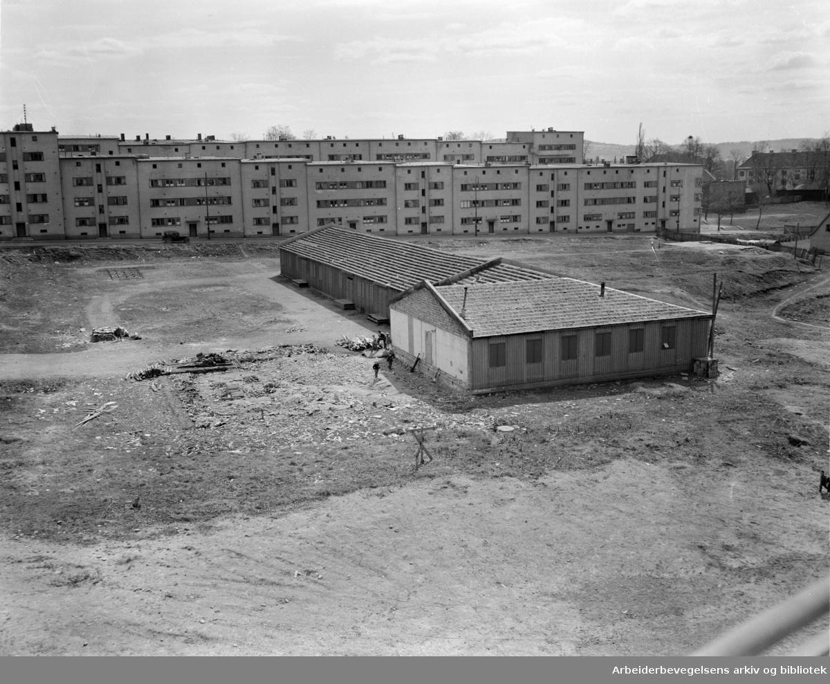 Åsen. Skankeløkka med tyskerbrakker. April 1951