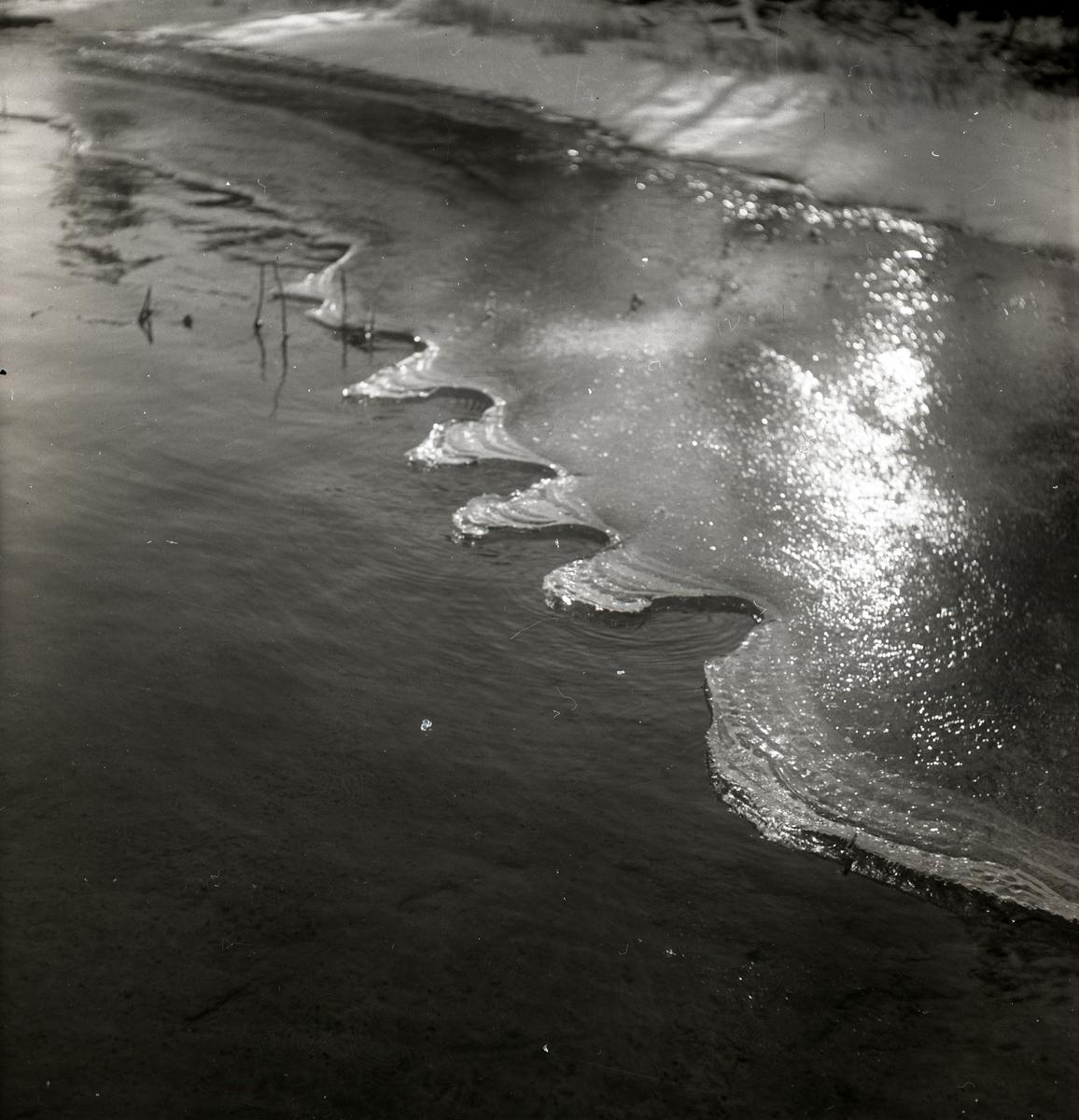 Vågformad iskant på Skidtjärn i Bollnäs, november 1949.