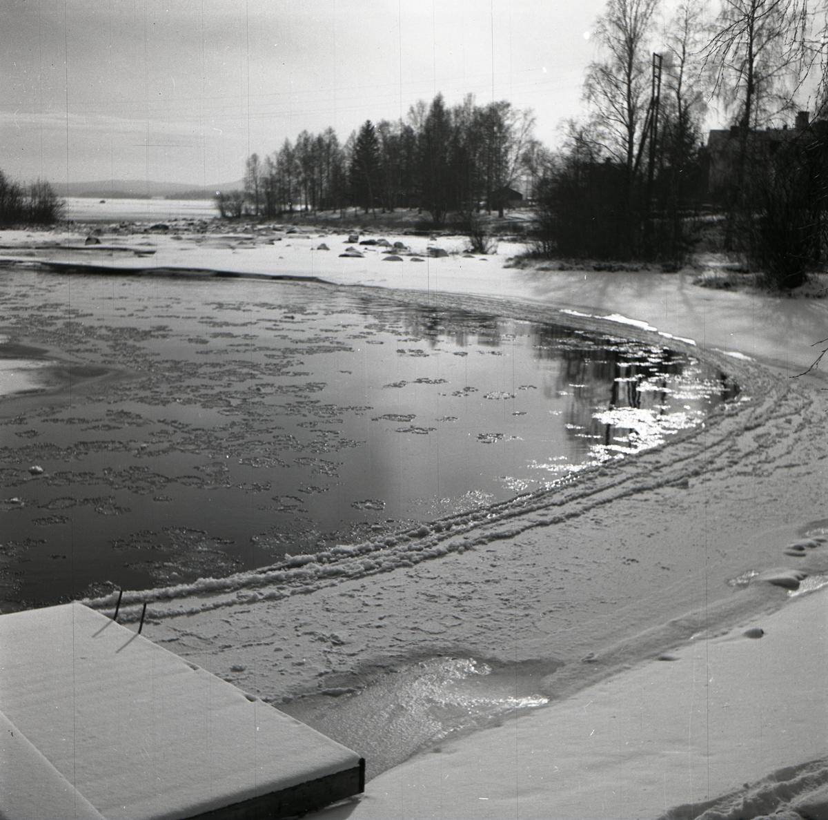 Isfläckar på Ljusnan intill en snötäckt strand, våren 1949.