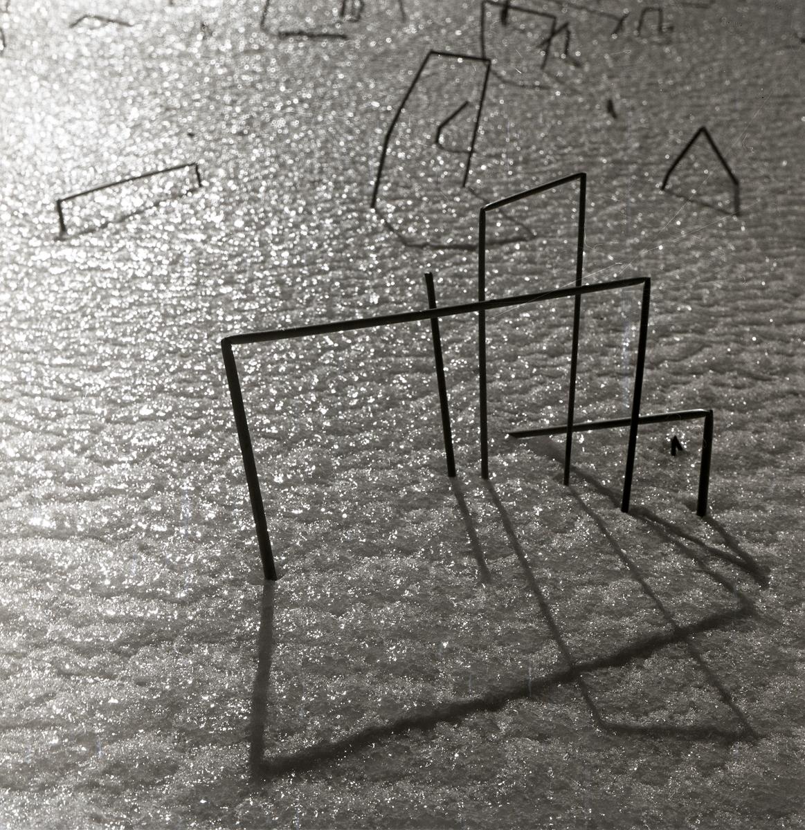 Några kvadratiskt formade vasstrån kastar skuggor på marken, 1960.