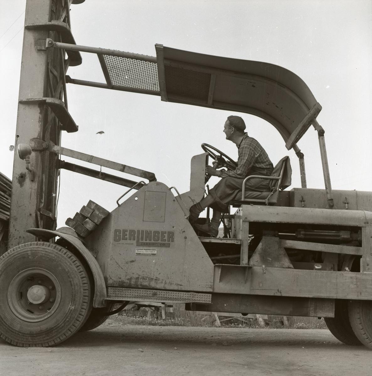 En man kör en truck med ett sädesärlbo inuti och sädesälorna flyger runt den för att vakta sitt bo, 13 juli 1955.