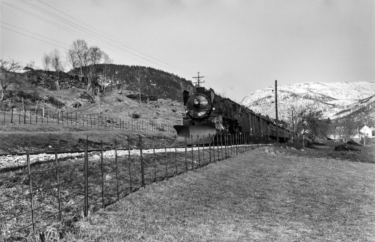 Påsketog retning Bergen, tog 7675, mellom Gjerdåker og Ygre, vest for Voss. Toget trekkes av damplokomotiv type 31b nr. 418.