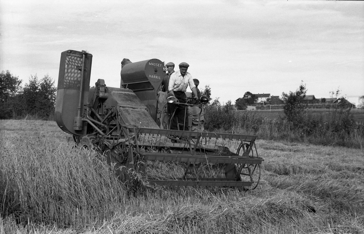 Kåre Fodstad kjører skurtresker i Rossvang på Kraby, september 1953. De andre personene er ikke identifisert. Åtte bilder.