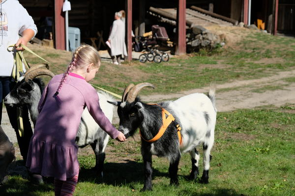 Barnas gård på Folkenborg (Foto/Photo)
