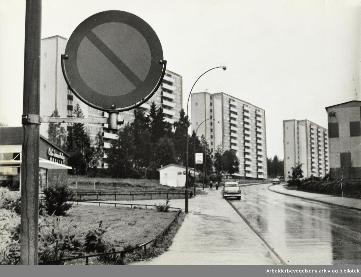 Bøler.Juli 1965
