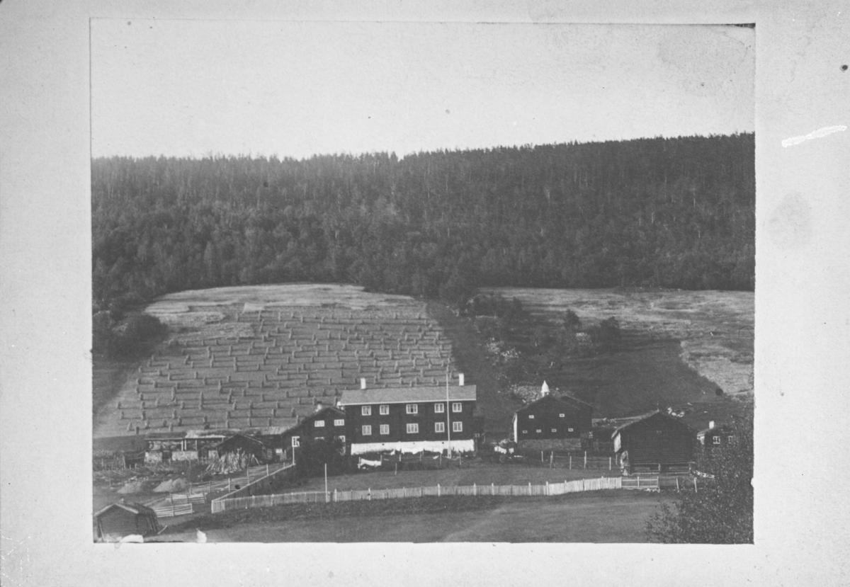 Repro. Fotografi av gardsbruket Bjølstad