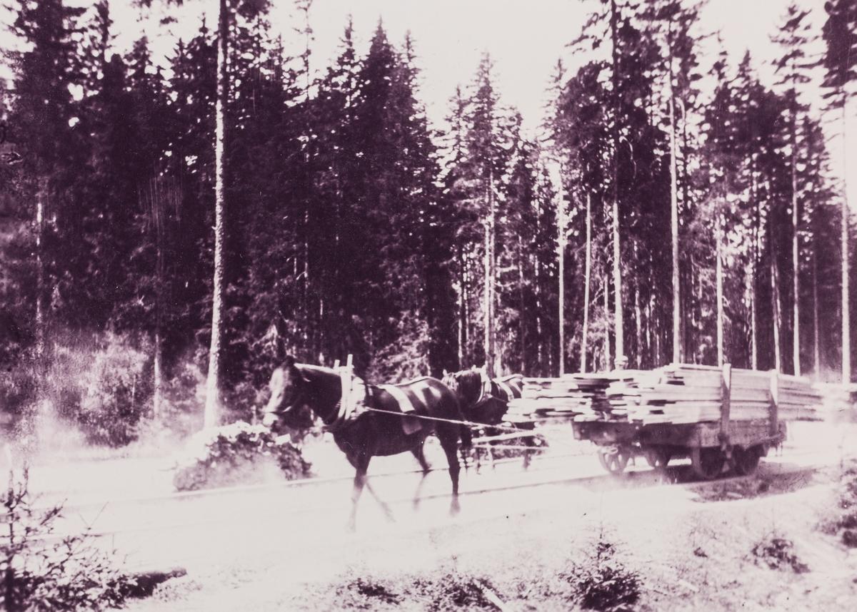 Hest og tralle lastet med plank på Bergerlinja mellom Dal stasjon på Hovedbanen og Berger Bruk ved Hurdalsjøen.