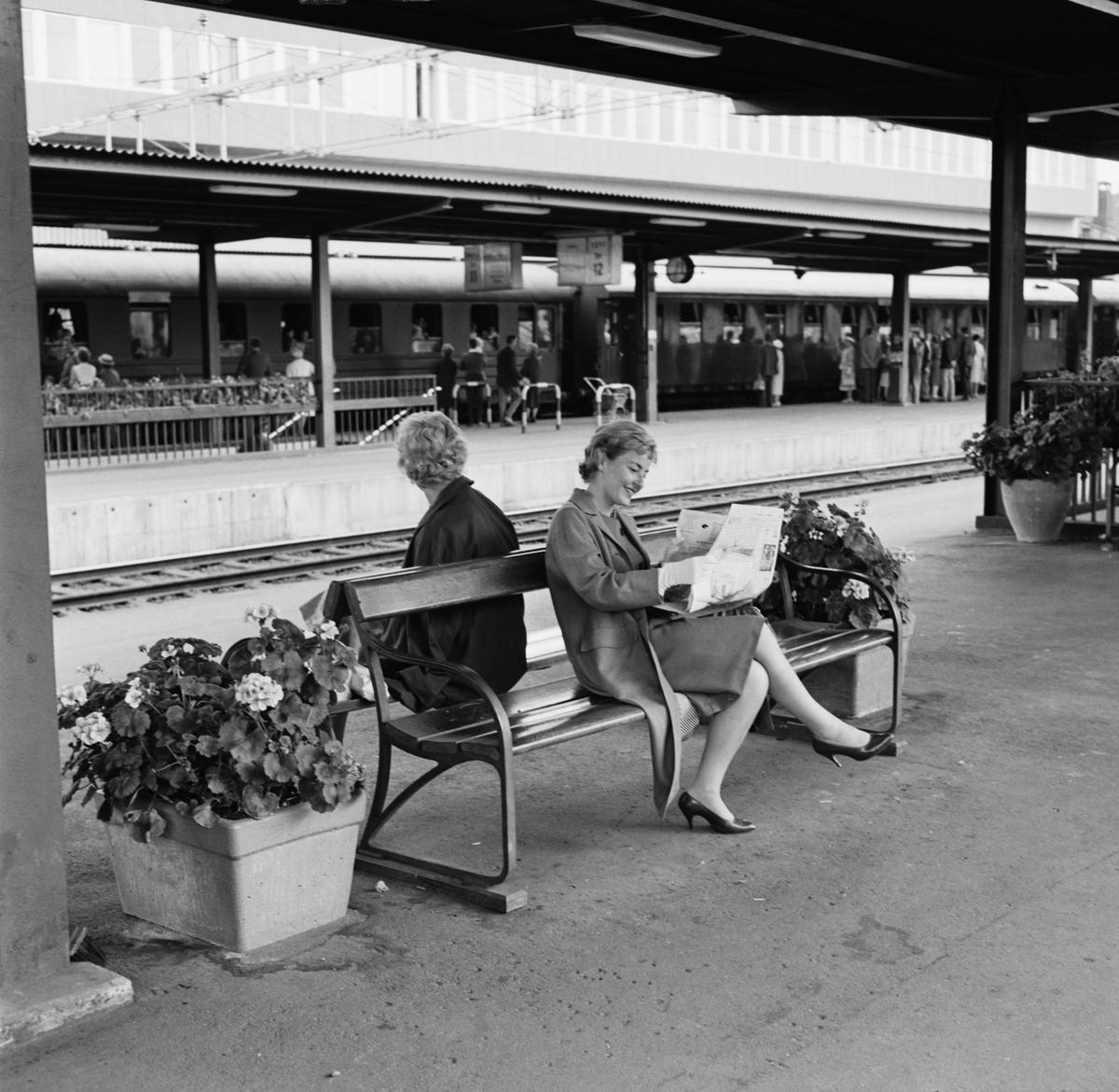 Blomlådor vid Centralstationens plattformar