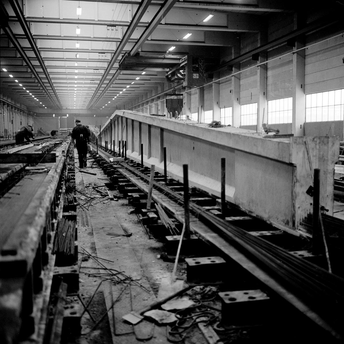 Strängbetong i Veddige. Tillverkning av betongbalkar