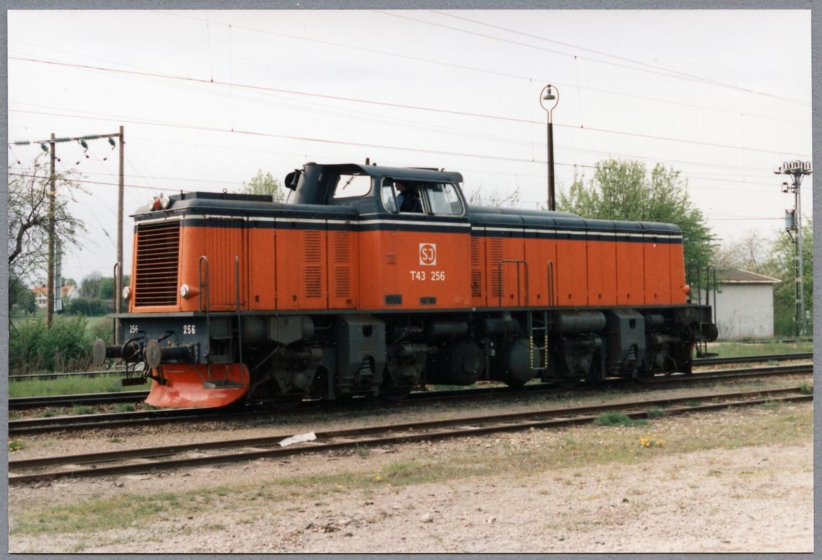 Statens Järnvägar, SJ T43 256.