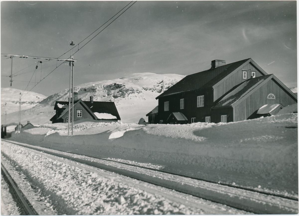 Vassijaure Station