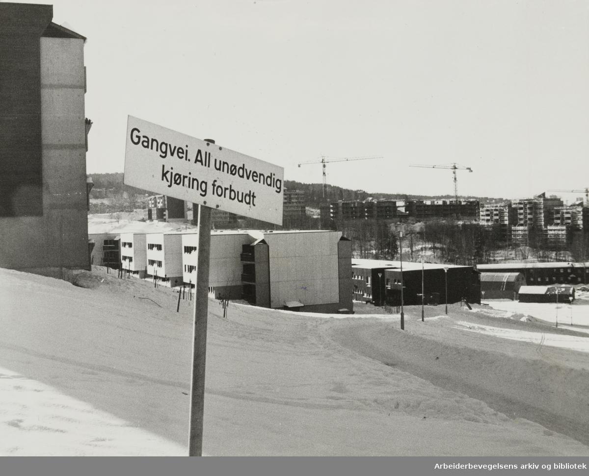 Furuset. Bjørnheim borettslag. Februar 1979