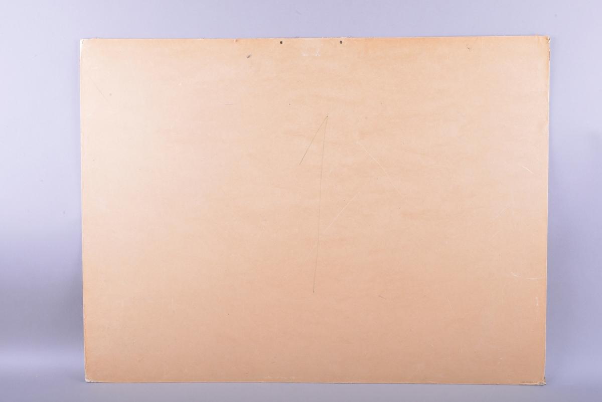 Rektangulær plansje av hvitt papir festet på kartong. Motivet er rektangulært og sentrert midt på plansjen. Motivet er trykt  farger.  Midt på øverst på plansjen er det to hull med innsatte metallringer, for oppheng. Det er trykte svarte bokstaver under motivet, og signatur nederst til høyre på motivet. På baksiden er det en påskrift gjort med blyant.