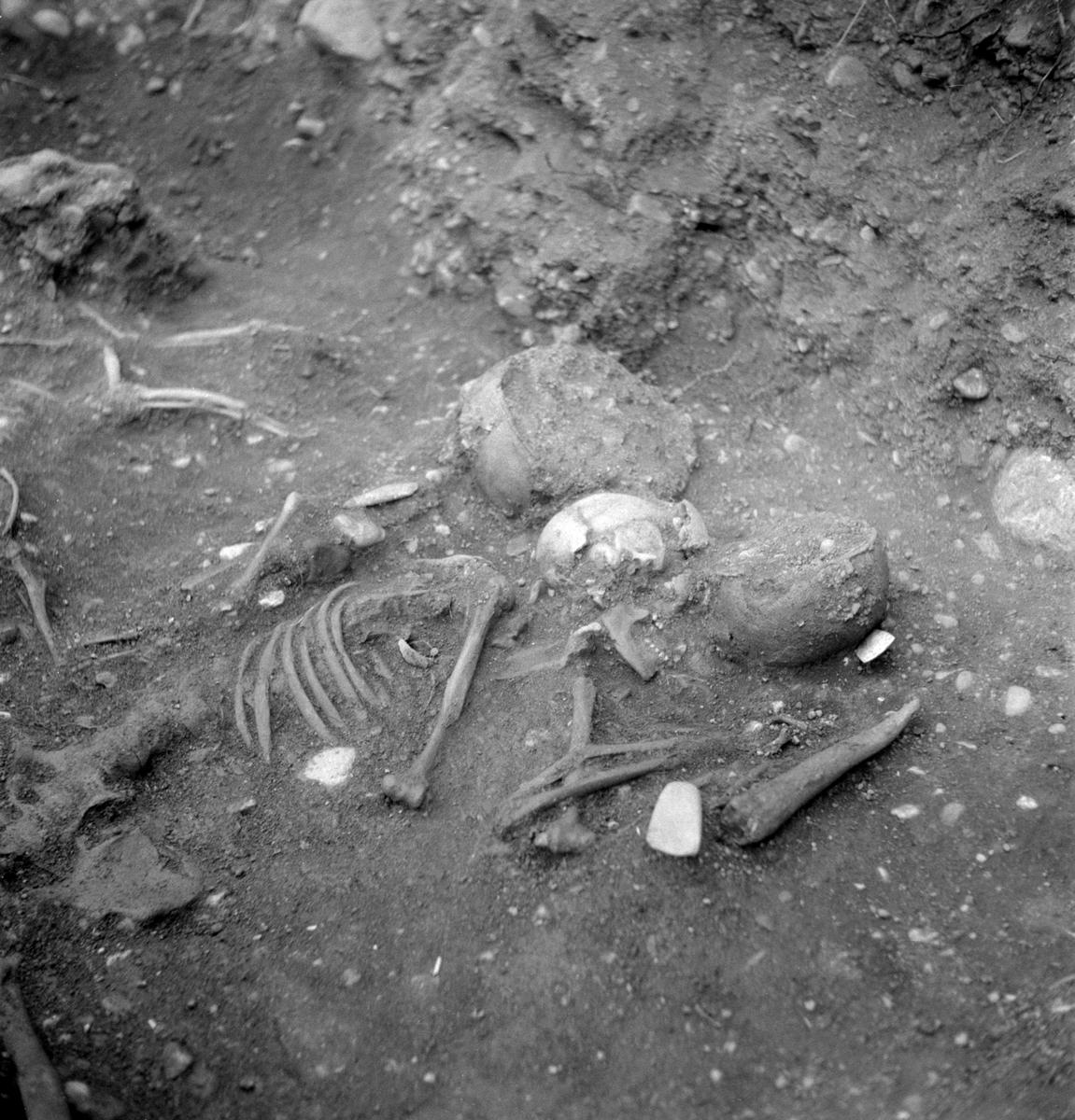 Hösten 1953 gjordes i samband med ombyggnad av vägen mellan Linköping och Vreta kloster, upptäckten av en omkring 4500 år gammal dubbelgrav . Undersökningen genomfördes längs perioden 16-28 november under ytterst ogynnsamma väderleksförhållande med stark kyla, men kunde slutföras väl med stöd av vägentreprenörens hjälpsamhet med anordningar för uppvärmning av arbetsplatsen. Bilden visar gravens kvinnliga skelett med hennes gravgåvor. Bakom kvinnan ses skelettet efter en hund. De små benen mellan tassarna skulle senare tolkas vara rester efter ett spädbarn. Gravens manliga skelett är utom bild.