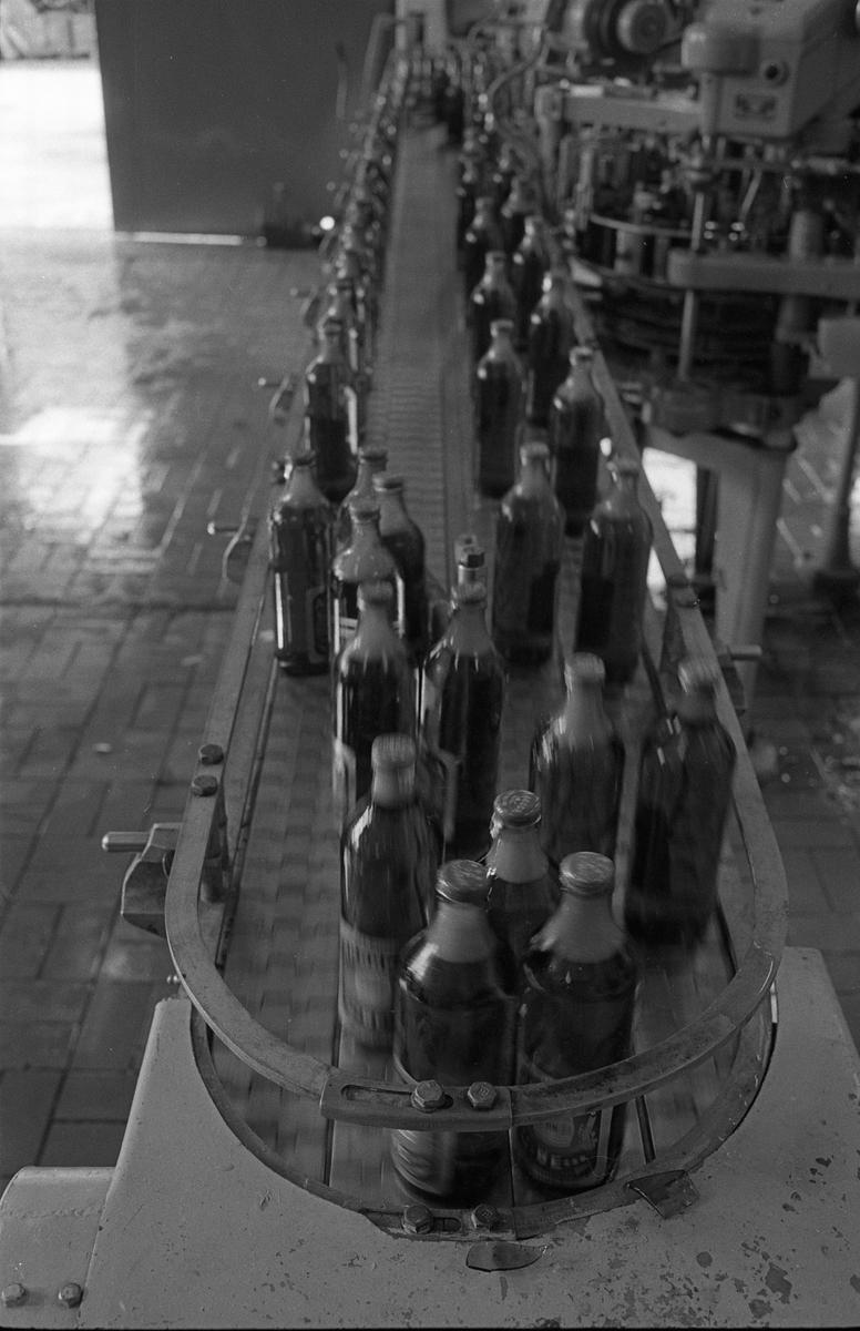 Arboga Bryggeri, interiör. Premiär för mellanölet. Fyllda ölflaskor åker på ett löpande band.  Anläggningen var färdigbyggd 1899 och verksamheten startade 1 november samma år. 24 oktober 1980 tappades det sista ölet, på bryggeriet. Märket var Dart. Läs om Arboga Bryggeri i hembygdsföreningen Arboga Minnes årsbok 1981