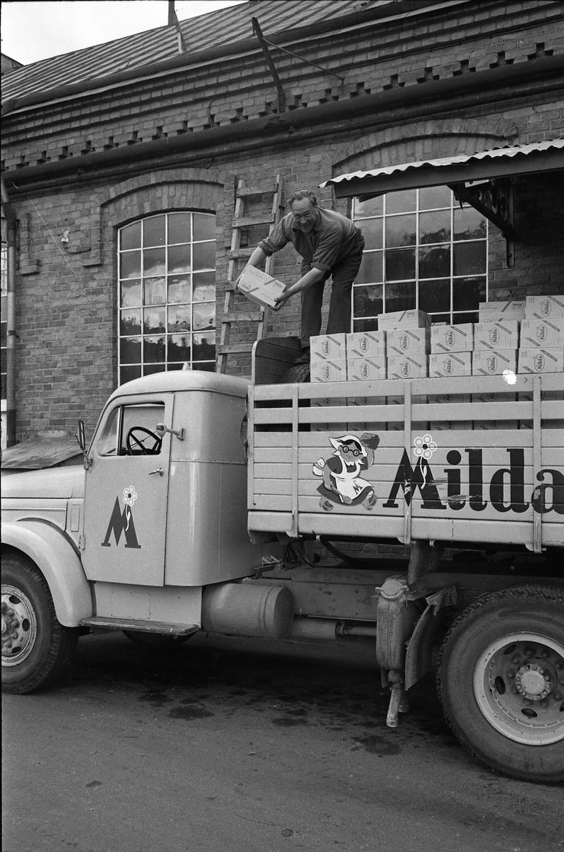 Arboga Margarinfabrik och en lastbil med texten Milda. Holger Strömberg packar margarinpaket på flaket. Detta är den sista utlastningen från Arboga Margarinfabrik. Trots att fabriken gick för fullt och nya paketeringsmaskiner just installerats, bestämde ledningen att fabriken måste läggas ner. Anledningen var att konkurrensen ökat och att fabrikens placering, inne i landet, gjorde det dyrt att frakta råvaror. Fabriken lades ner 30 september 1960. Läs om Arboga Margarinfabrik: Arboga Minnes årsbok 1978 Reinhold Carlssons bok Arboga objektivt sett