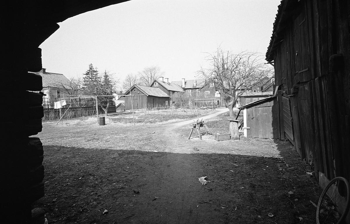 Bostadsmiljö. Innegård med flera byggnader. Tvåvånings bostadshus i trä. Äldre bebyggelse. I trädgården finns en torkställning för tvätt. Fotografens anteckning: Dokumentation av fastigheter i kvarteren söder och norr om ån. Bilder och beskrivning finns på Arboga Museum.