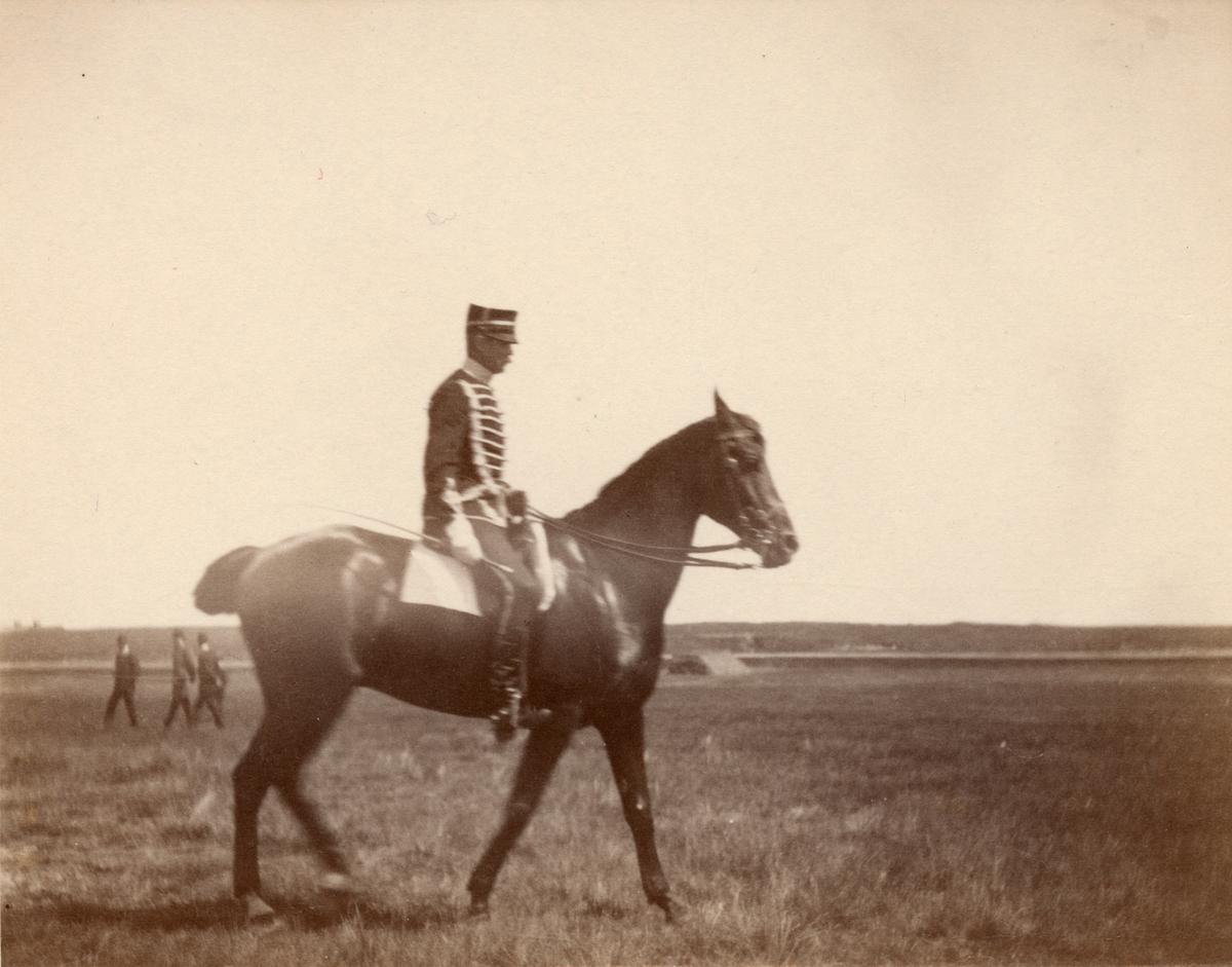 Soldat till häst från Livregementets husarkår.