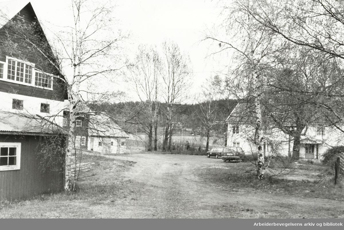 Nordre Lindeberg gård. Mai 1979