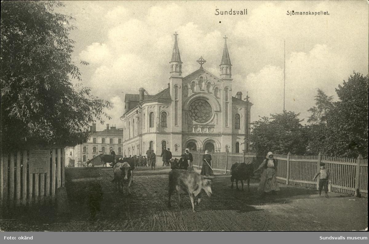 Vykort med motiv av kvinnor som vallar kor med Sjömanskapellet i bakgrunden.