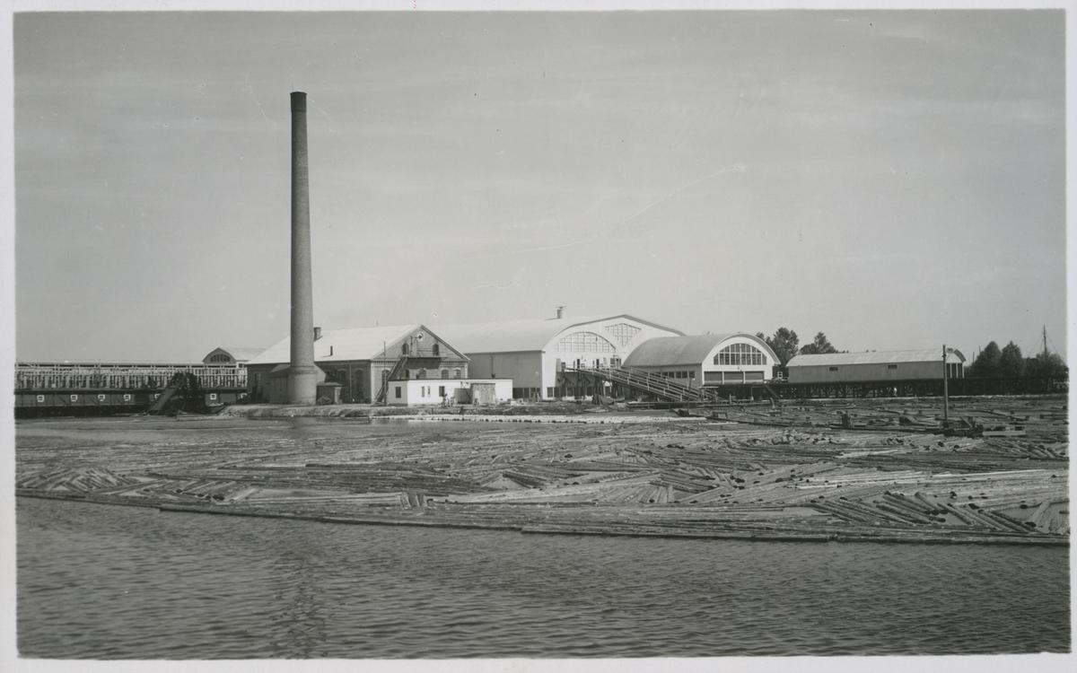 Håstaholmens ångsåg i Hudiksvall.