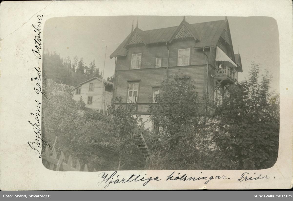 Vykort med motiv över Bergströms gård i Ortviken.