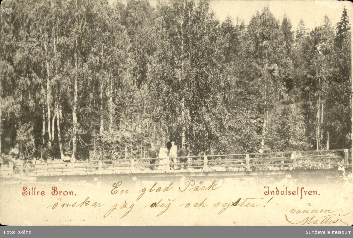 Vykort med motiv över några personer på bron vid Sillresåg.