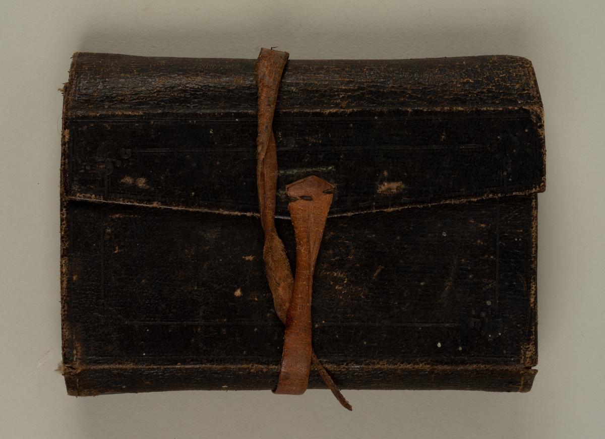 Skinnmappe med fiskefluer. Fluene er av typen våtflue, håndbundet med tråd av nylon-lignende materiale på kroker uten krokøye.