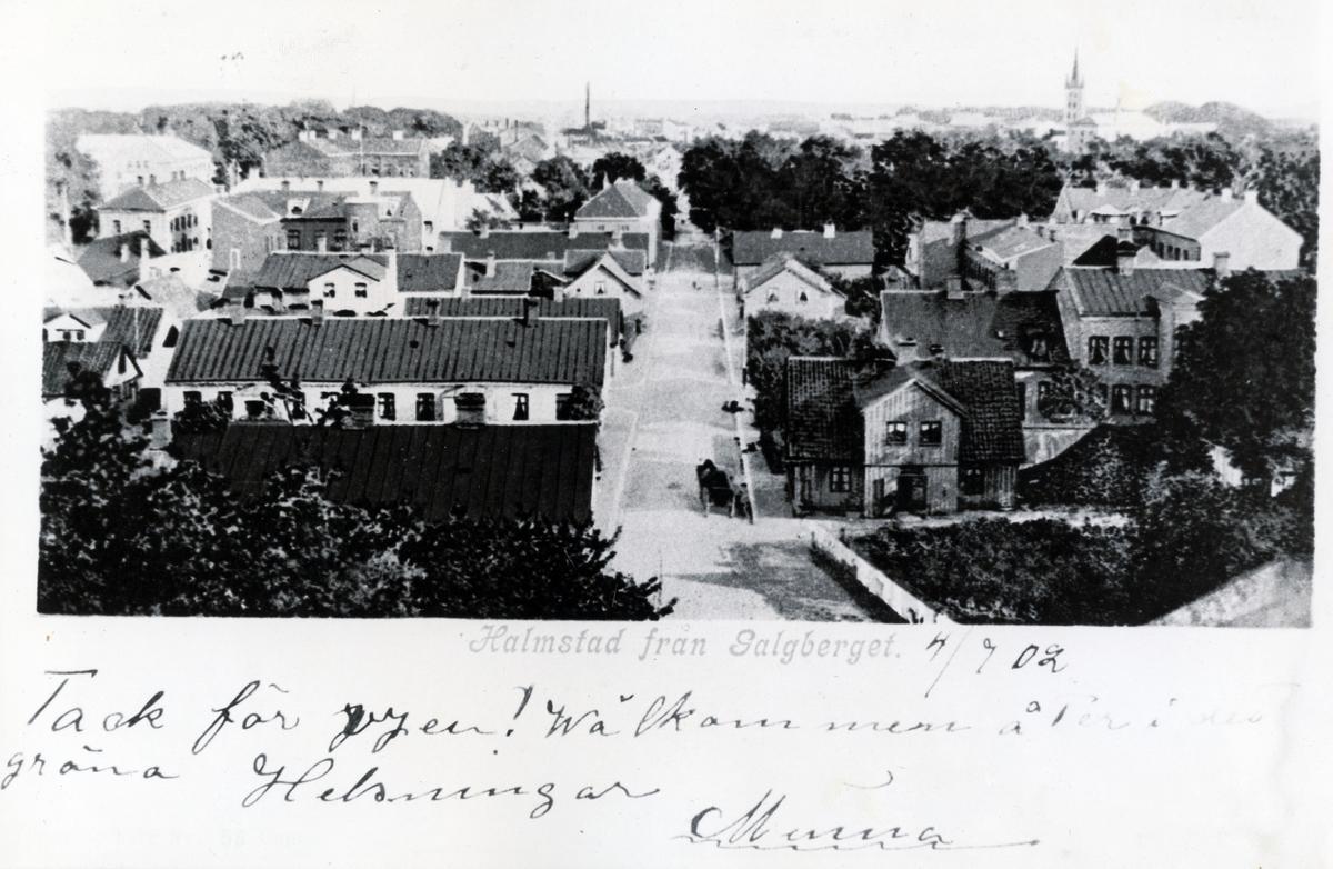 Halmstad från Galgberget.