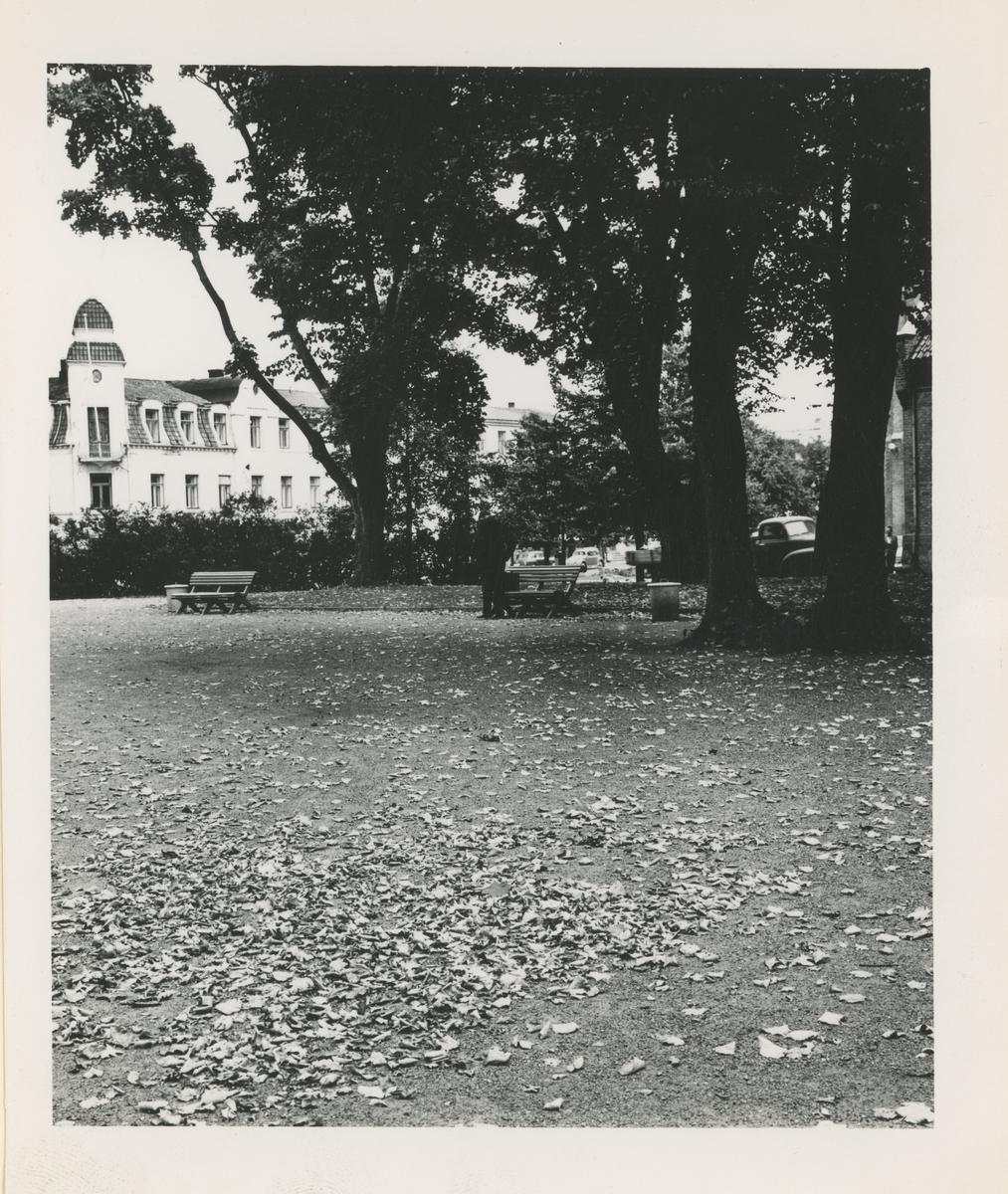 Kirkeparken. Årstall:Ca. 1960.  Fotograf har stått ved paviljongen. Detaljer:Parkutstyr, Moss Hotell i bakgrunnen. Historikk:Parken ble utbedret til musikk og festpark i 1920 da paviljongen ble oppført.