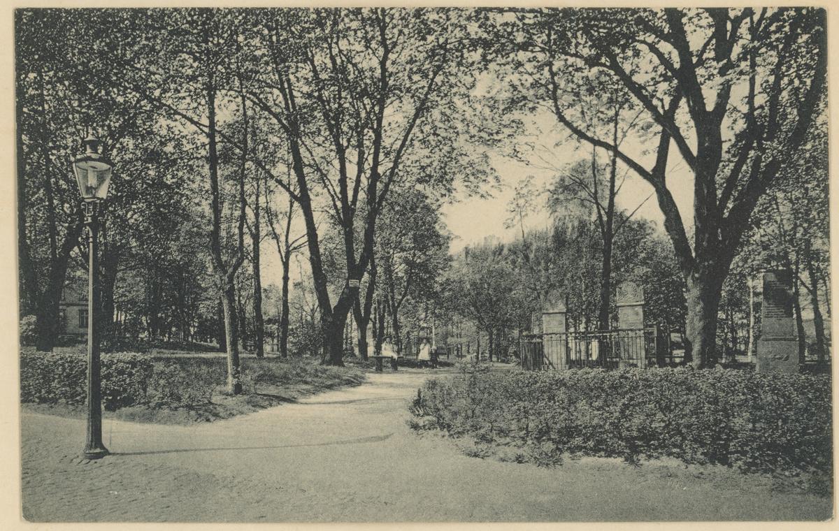 Postkort. Gammelt bilde fra Kirkeparken.