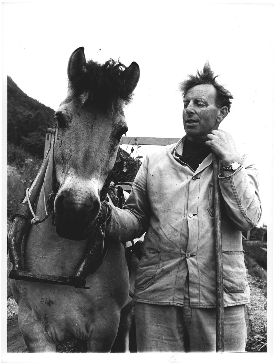 Mannen og hans hest. Standal