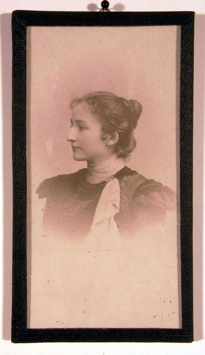 Profilportrett av en ung voksen dame i mørk kjole med hvitt sjerf og oppsatt frisyre.