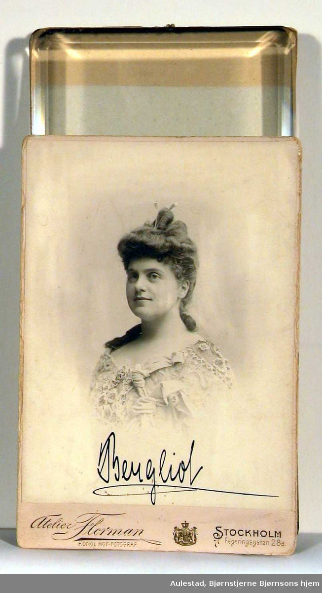 """Protokoll: """"Portrett av ung kvinne, brystbilde. Oppsatt hår, med hårpinner, en svært plastisk utført kjole skimtes."""""""