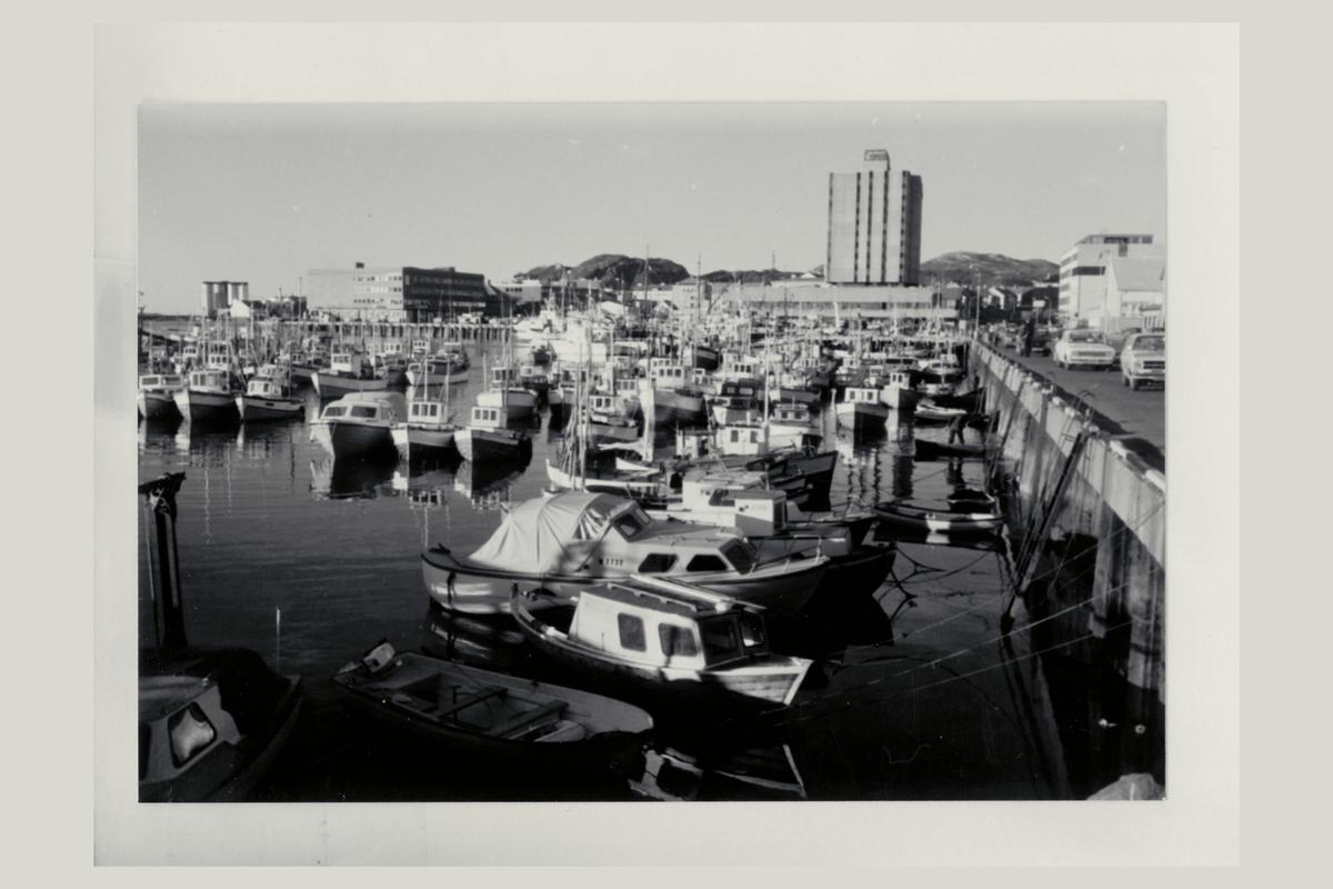 eksteriør, 8000 Bodø, båthavn, småbåter