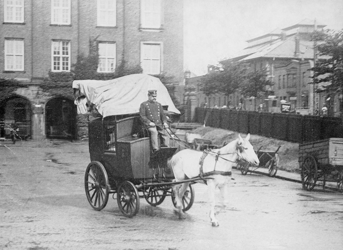 transport, hest, vogn 4 hjul, mann