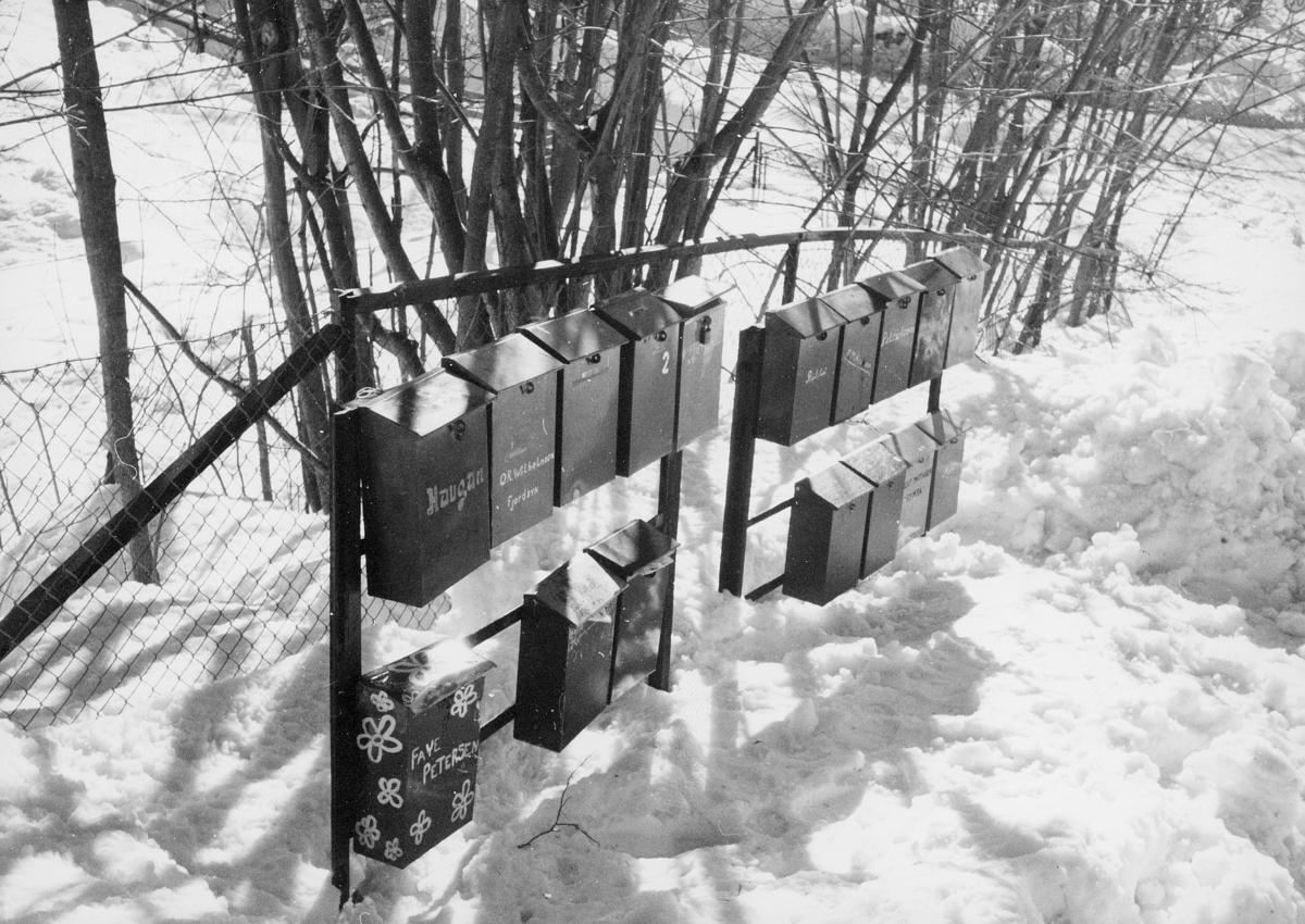 postkasser, private, ved et gjerde, masse snø, eksteriør
