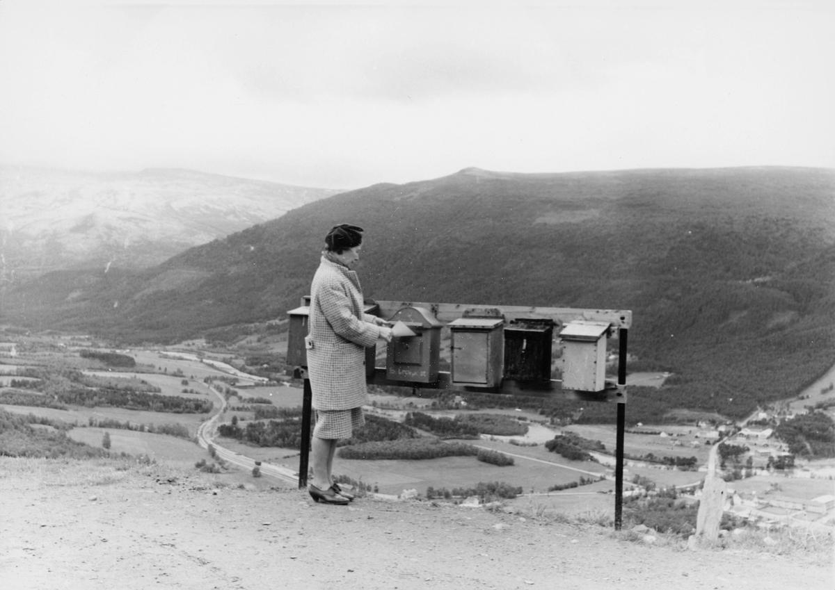 postkasser, private, offentlig, dame, ca. 1950, eksteriør