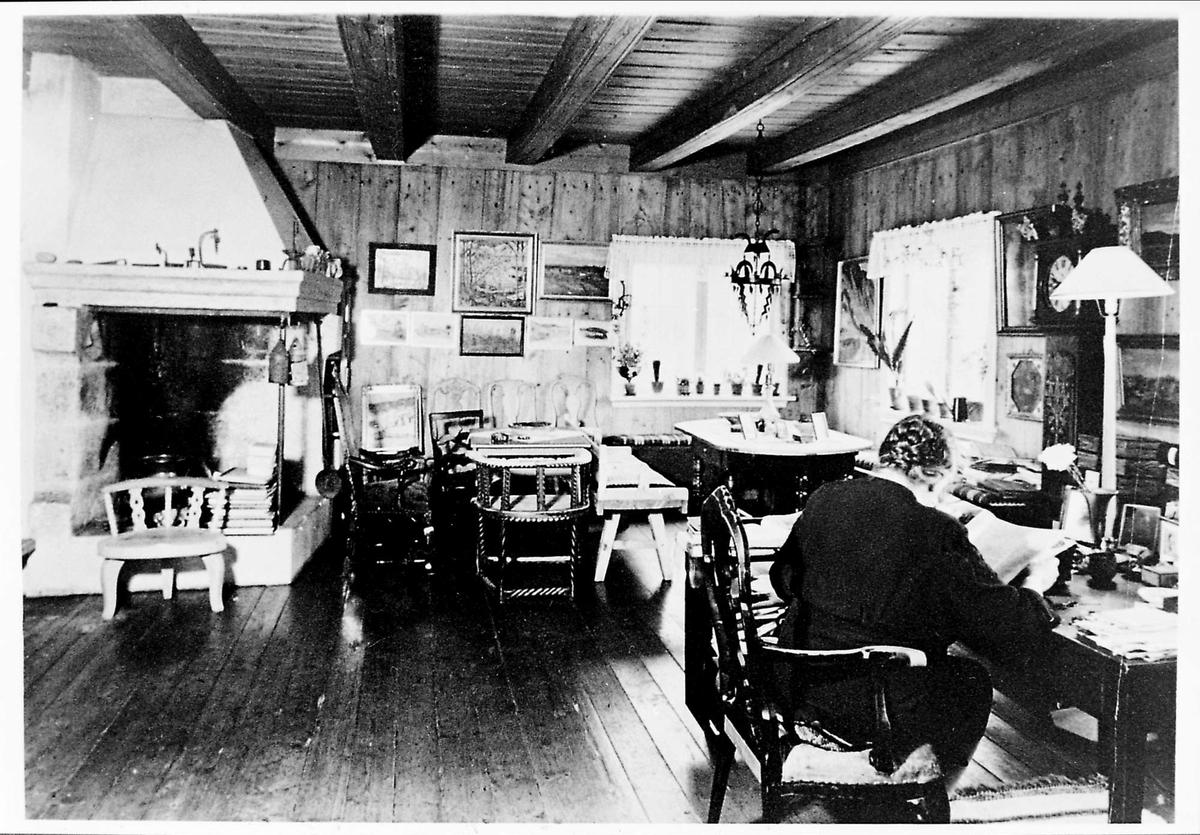 Interiør, peisestue, møbler, kvinne