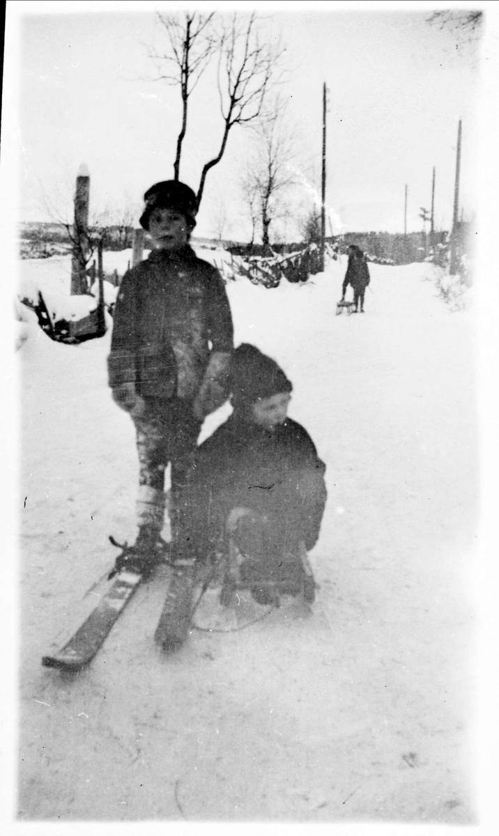 Barn, snø, ski, kjelke