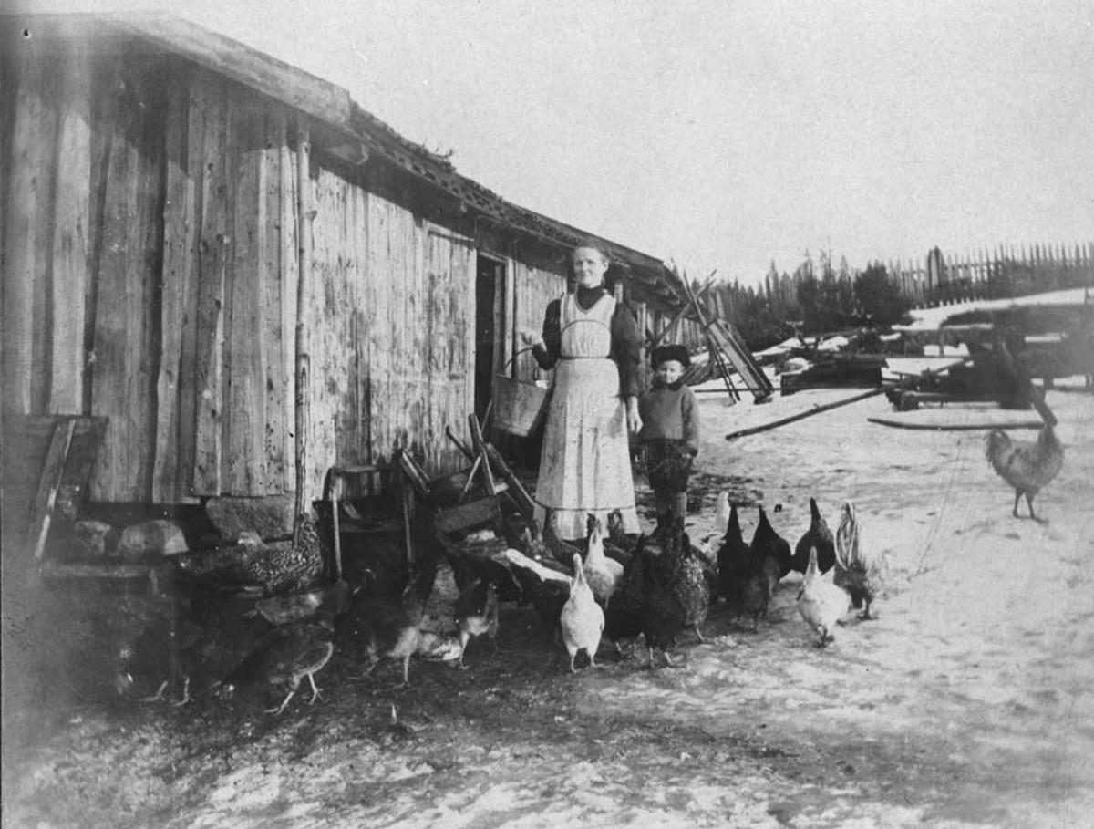 Stina Høybraaten og hønene.