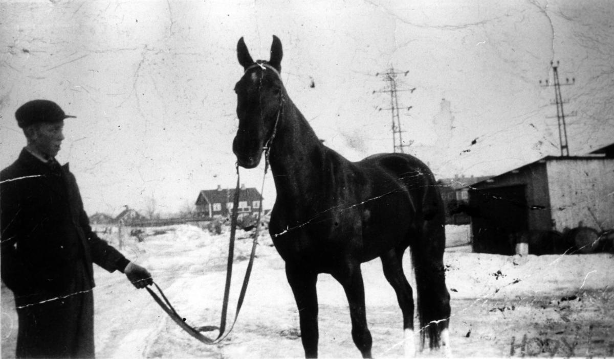 Mann, hest, bolighus, sne, skur